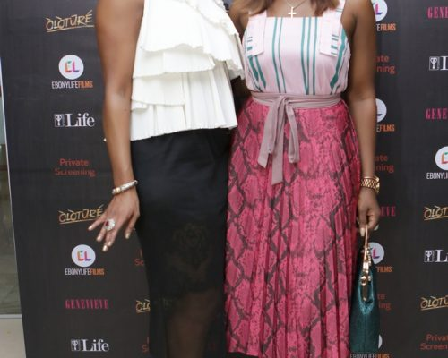 Oloture Lagos Private Screening 34